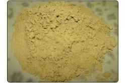 Hemp Protein Extract 250 gr