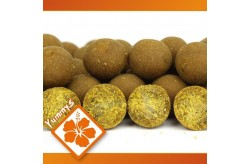 Osmotic Oriental Spice Boilie 2kg - 20mm