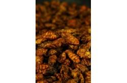 Black Fly Larvae 400ml