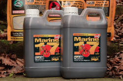 Marine 17 Compound 1 litro