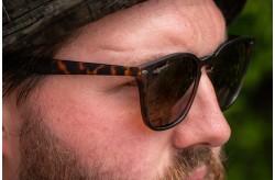 Shoreditch - Matt Toroise Shell/Brown Lens